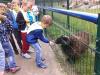 sikaloo_zoo_20