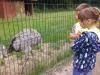 sikaloo_zoo_21